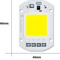 COB LED 220V 50W cold white